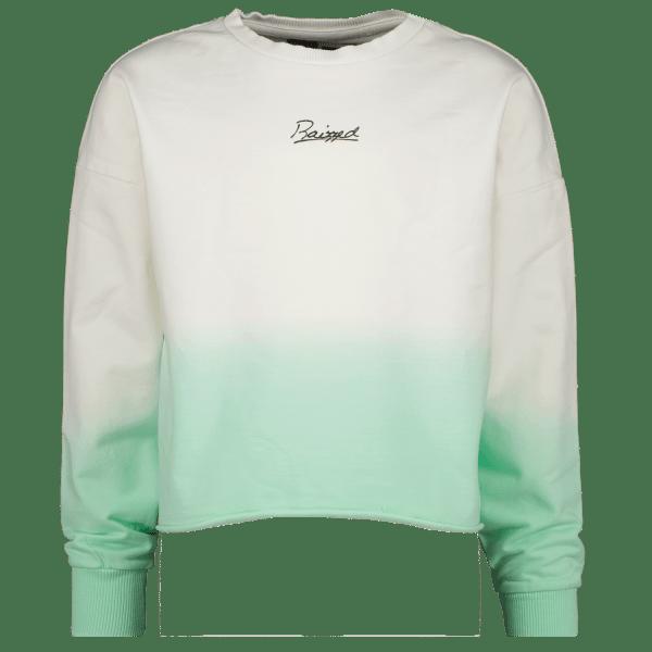 Sweater Wyoming